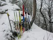 Рекламный снимок для основных лыжных брендов - Fisher, Rossignol,  Madshus, Atomic